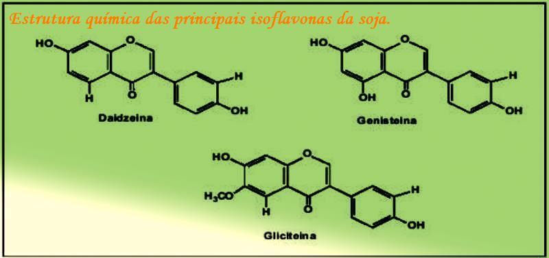 tipos de esteroides e seus efeitos